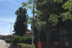 Pubblica illuminazione - bm impianti per aset (4)