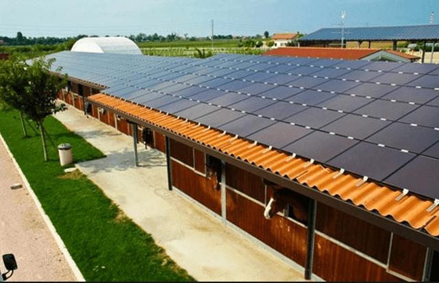 fotovoltaico imprese agricole bando bmimpianti